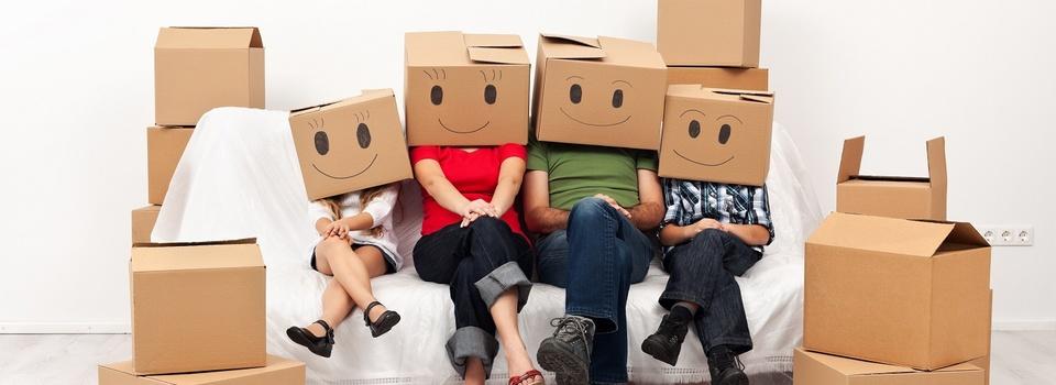 Les déménageurs, des professionnels à votre service